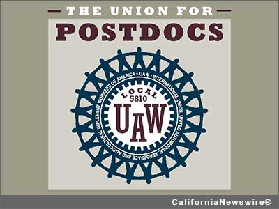 The Union for Postdocs