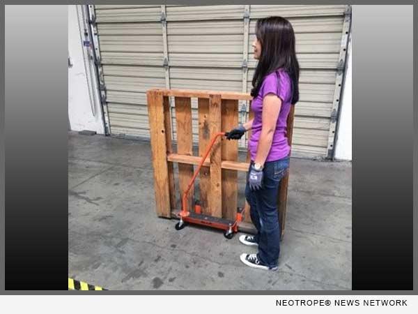 No Lift Pallet Mover
