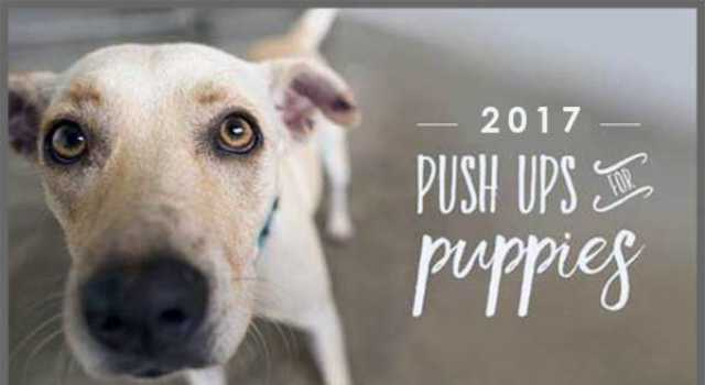 2017 Pushups for Puppies