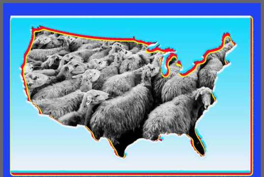 Nation of Sheep Made to Distrust Hillary