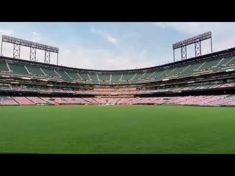 MLB Stadium Cut Outs