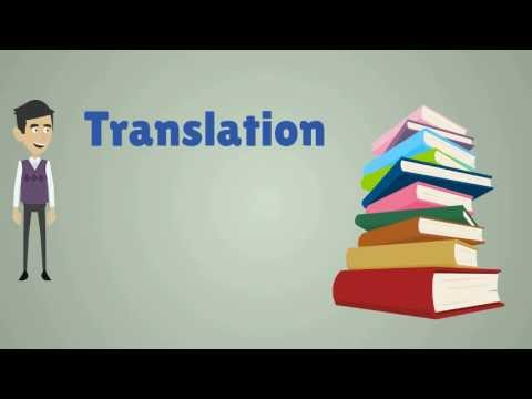 Speaking the Right Language - The Value of Translation Services