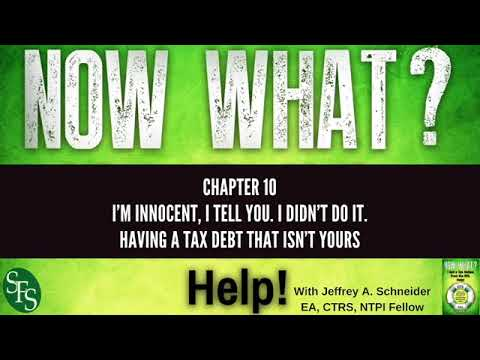 IRS Tax Notice Book Chapter Overview from Jeffrey Schneider